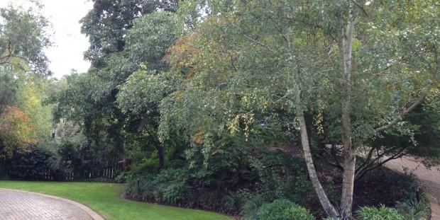Overleaf Park Orchards 4