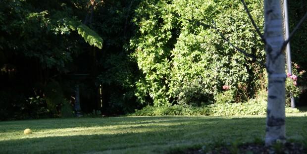 Overleaf Park Orchards 6